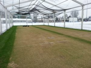 marque for cricket netting