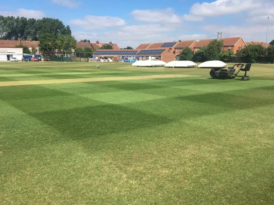 cutting a cricket square