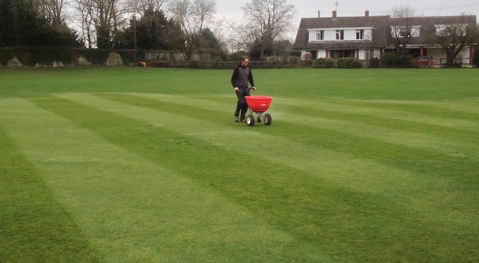 fertilising a cricket square