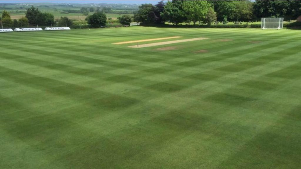 outfield ready for game