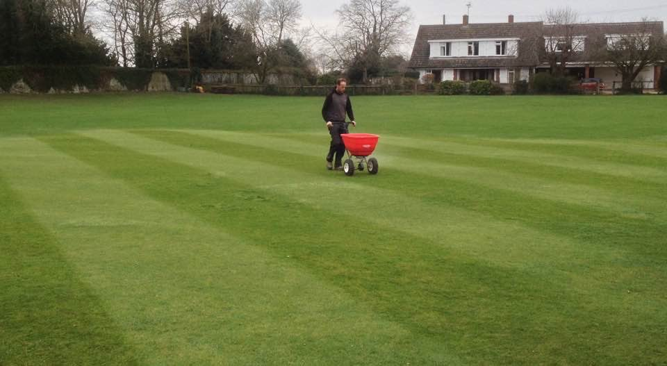 fertilising the cricket square