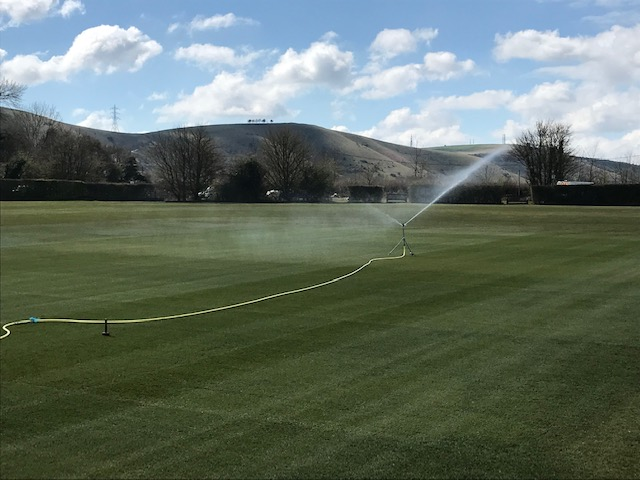watering the cricket square