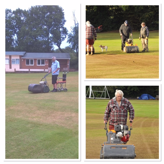 scarifying the cricket square