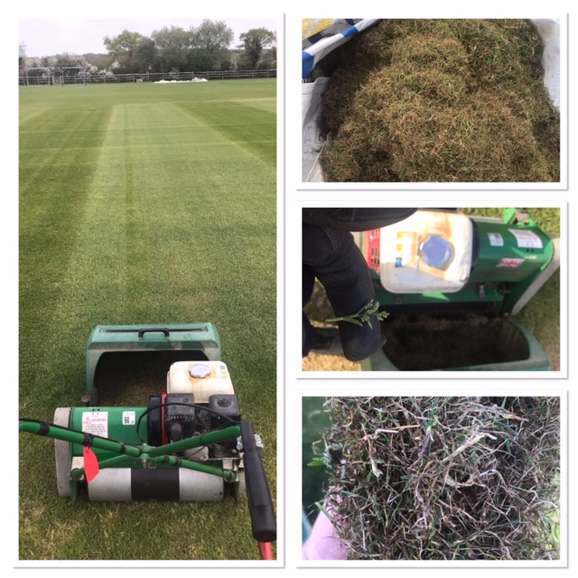 mowers images of verticutting