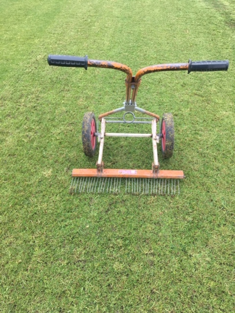 Thinning out the cricket pitch