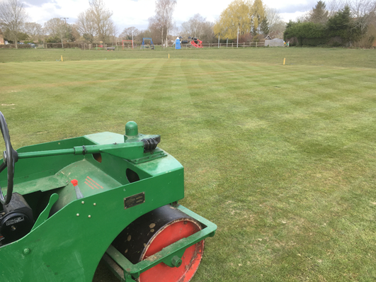rolling a cricket square