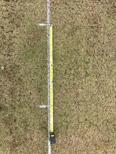 cricket pitch marking out