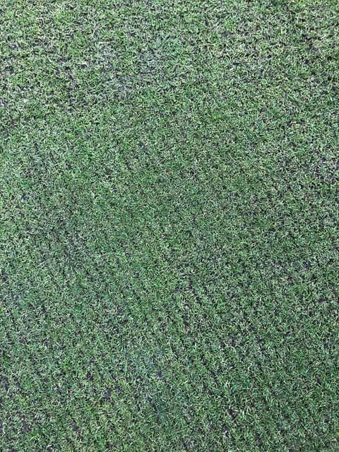 scarifying grooves