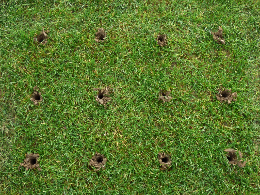 holes from aeration