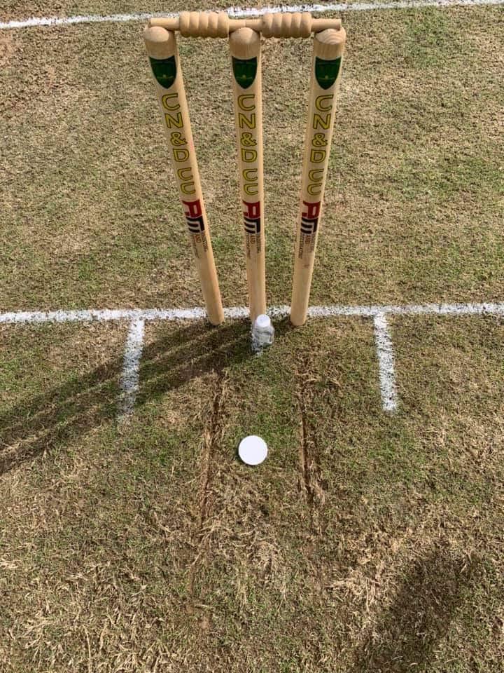 cricket pitch markings