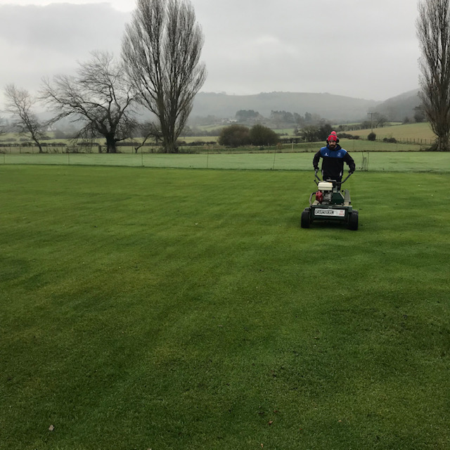 aeration of a cricket square